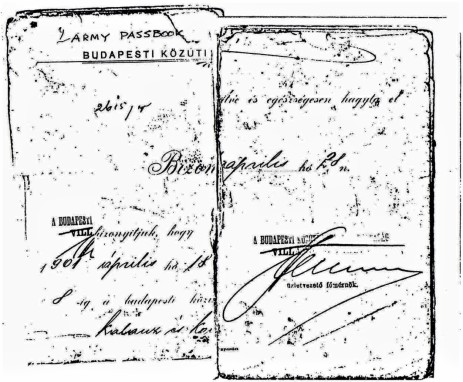 Taraczkozy Military Pass Book 1