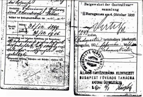 Taraczkozy Military Pass Book 2